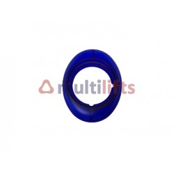 OVAL BLUE FRAME
