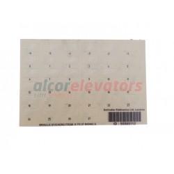 BRAILLE STICKER GLASSY SCHINDLER SELF ADH -6 A 27 ( BIONIC )